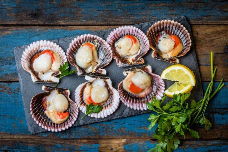 Рецепты блюд из морского гребешка